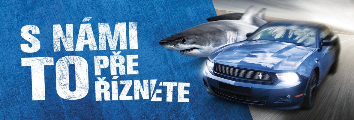 S námi to přeříznete - mustang a žralok